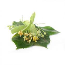 Linden flowers BIO - 15g